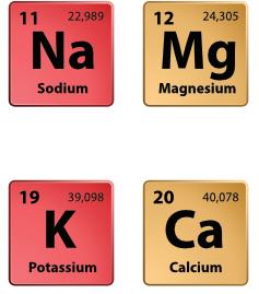 electrolyte elements