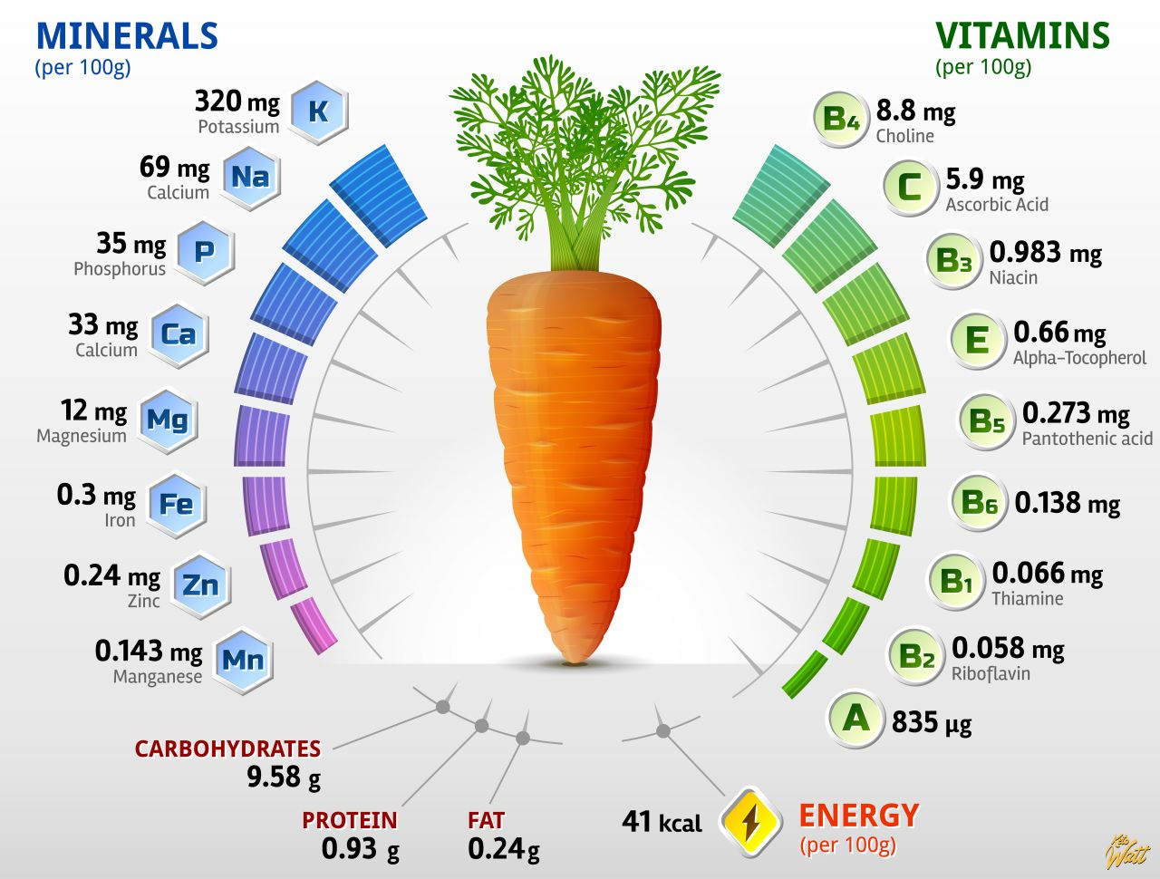 carrot_vitamins_infographics