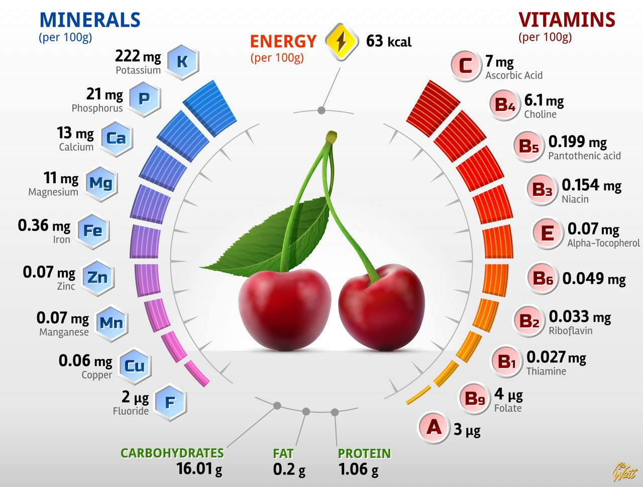 cherry_vitamins_infographics