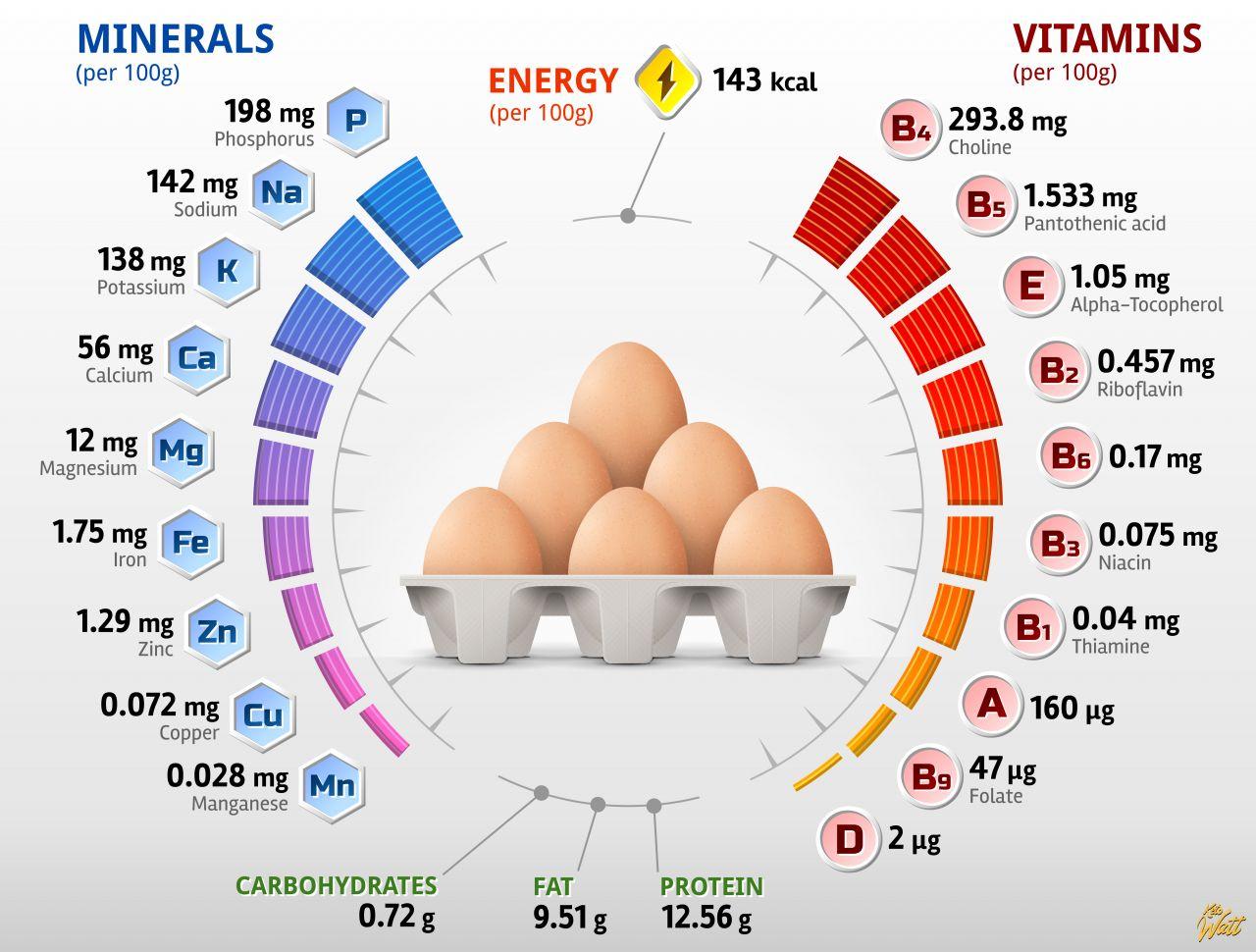 chicken-eggs_vitamins_infographics