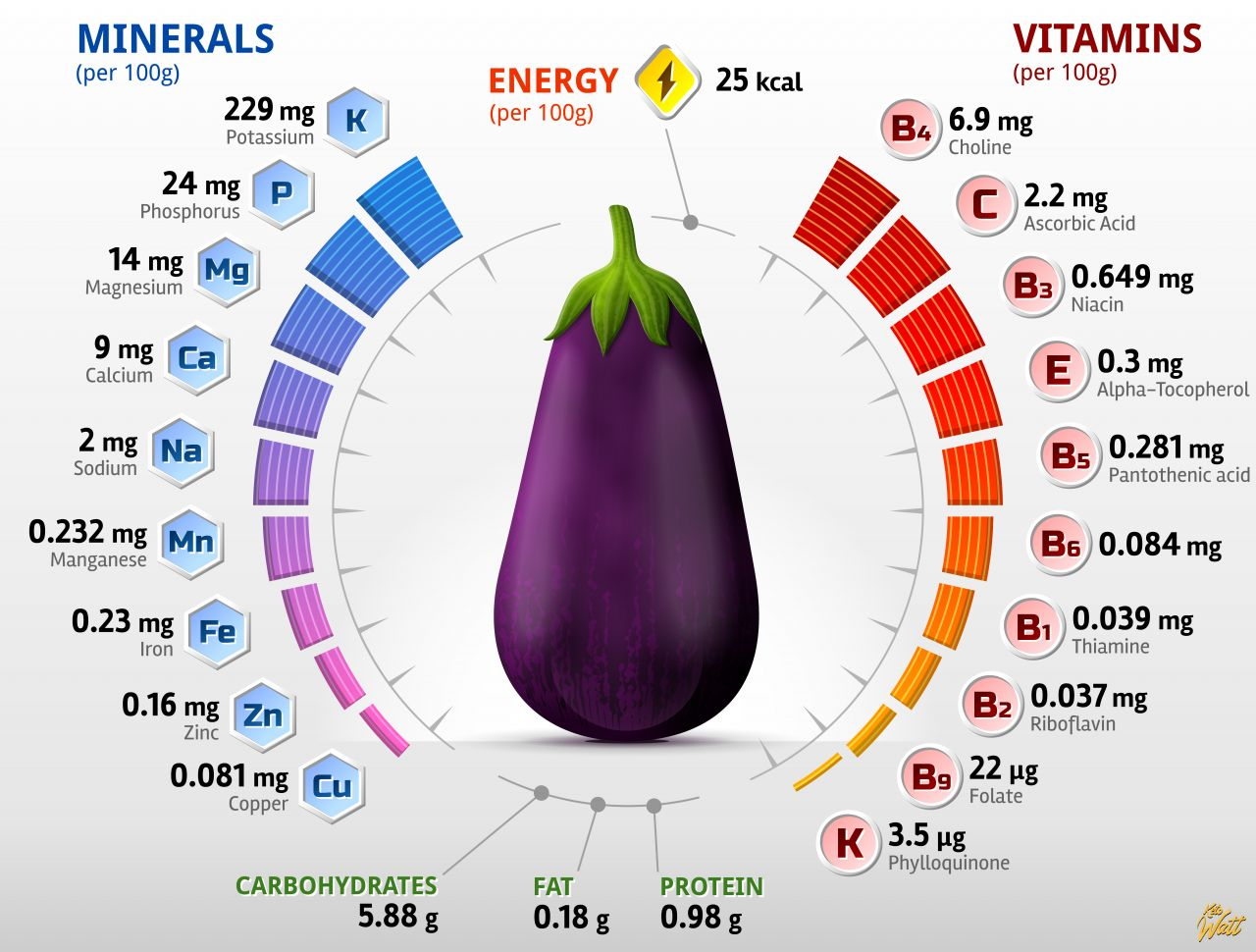 eggplant_vitamins_infographics