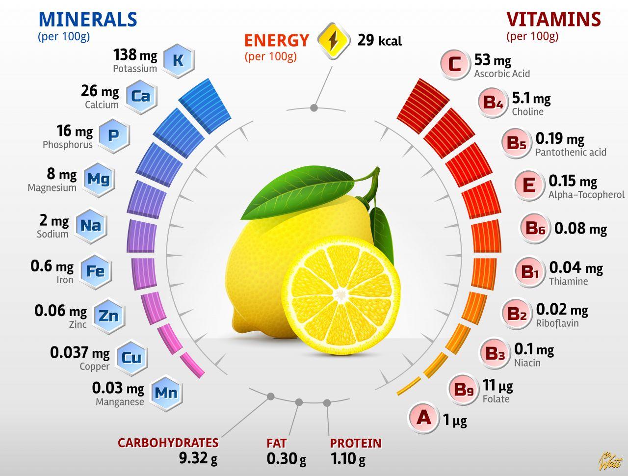 lemon_vitamins_infographics
