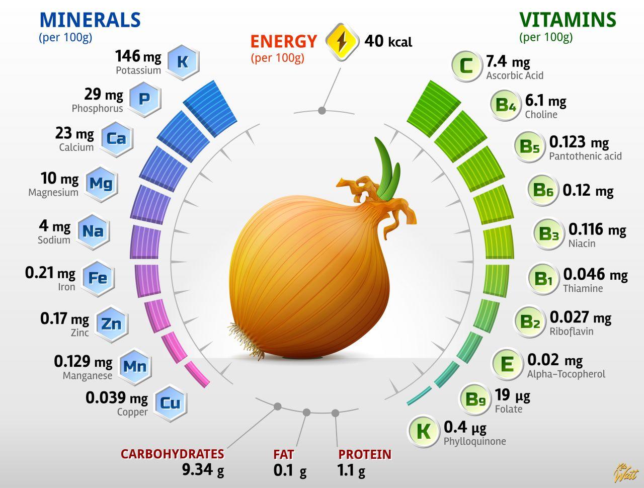 onion_vitamins_infographics